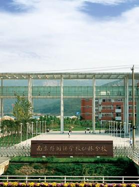 南京外国语学校分校