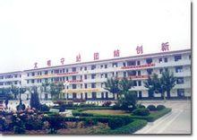 邳州市第三中学