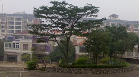 广州市第六十七中学