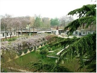 河北省石家庄市第十三中学