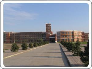 新城区蓝天中学