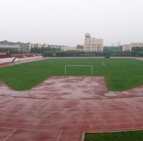 上海市徐汇位育体校