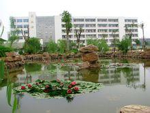 江苏省睢宁高级中学