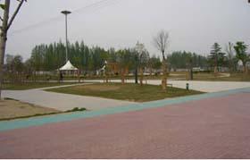 邳州市宿羊山高级中学
