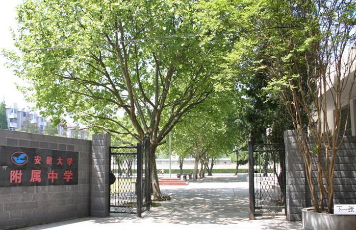 安徽大学附属学校