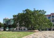 湖里区禾山中学