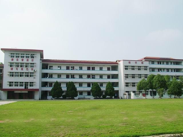 武汉市蔡甸区第五高级中学校