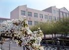 番禺南村中学