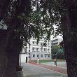 四川省成都市树德协进中学