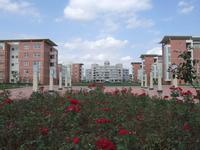 上海南汇中学